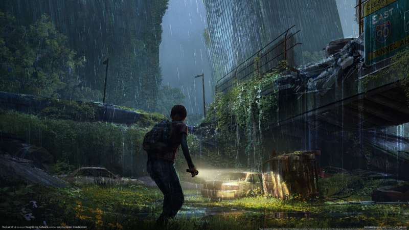 The Last of Us Hintergrundbild 20