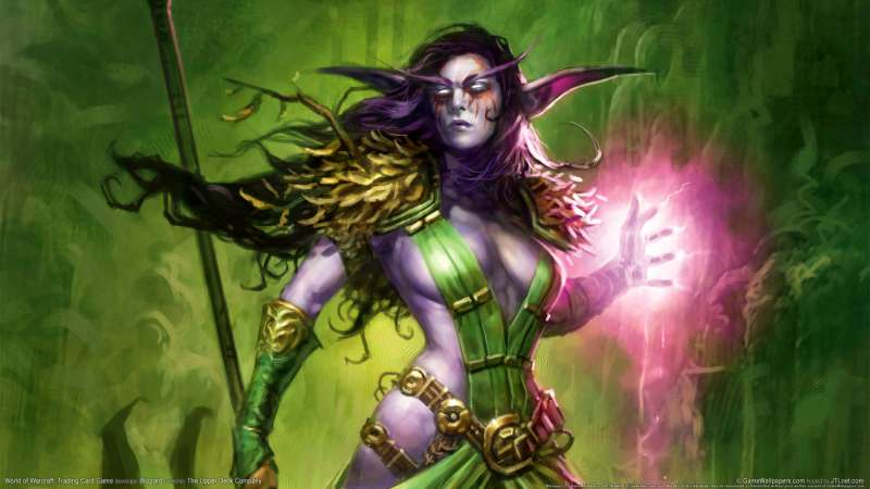 World of Warcraft: Trading Card Game Hintergrundbild 10