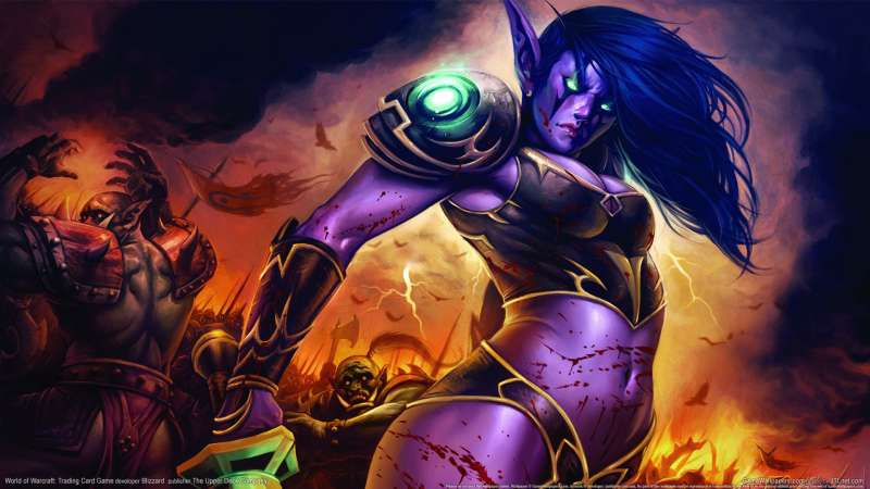 World of Warcraft: Trading Card Game Hintergrundbild 27