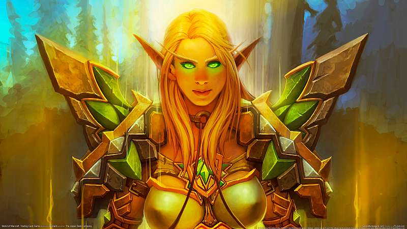 World of Warcraft: Trading Card Game Hintergrundbild